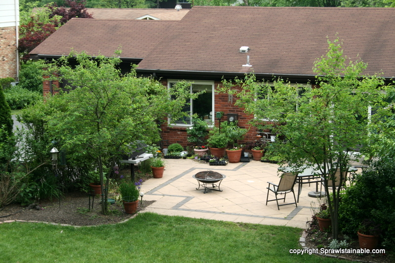 Sustainable Garden Patio with fruit trees, bird feeders and edible planters