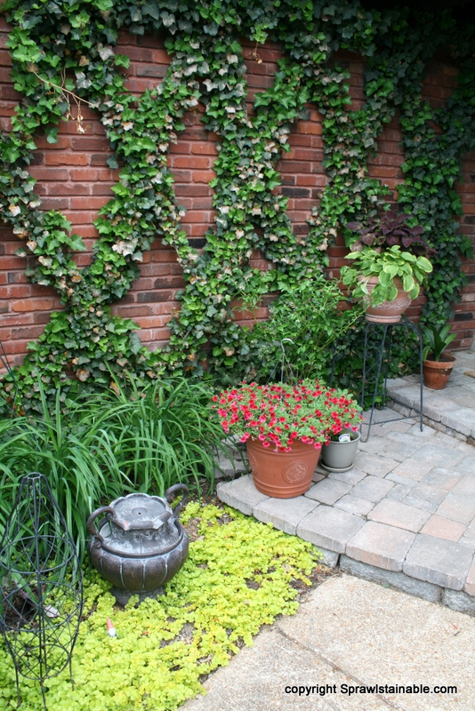Creeping Jenny groundcover and an arrangements of planters greet visitors