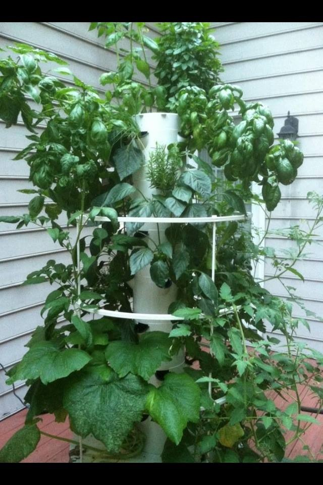 The Tower Garden is an amazing compact and easy system for growing hydroponic vegetables and herbs on your deck or patio!