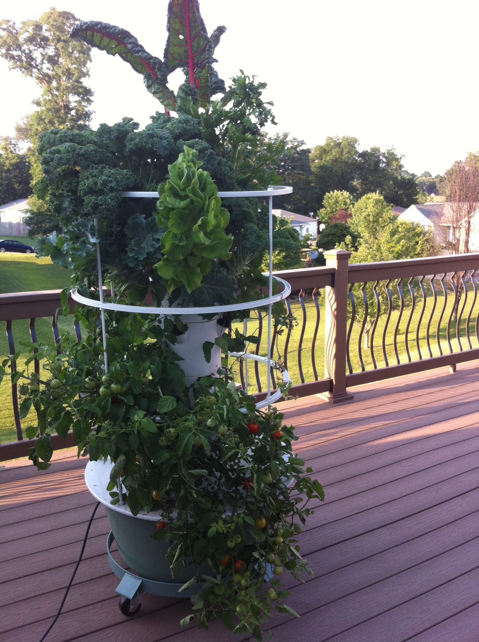 hydroponic tower garden with trellis