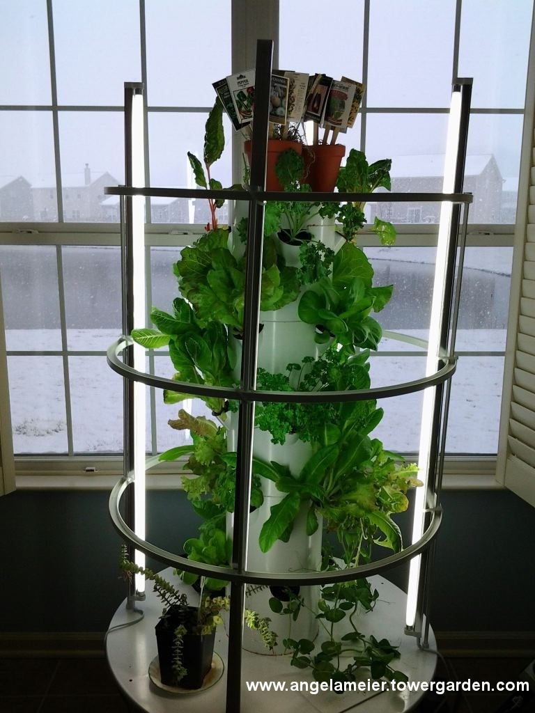 The tower garden can be used indoors with a great optional lighting rig!