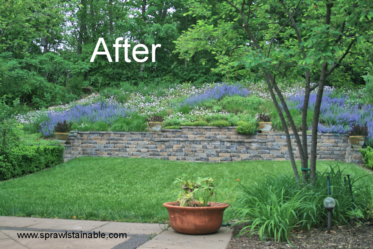 backyard hill landscaping ideas | Sprawlstainable